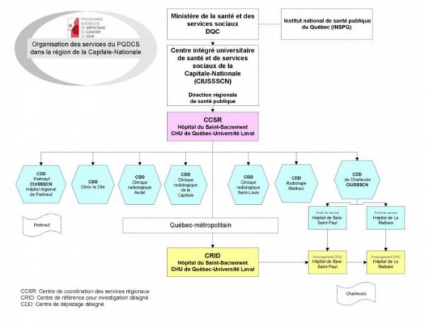 Organisation des services reg_novembre 2015_version couleur fond blanc